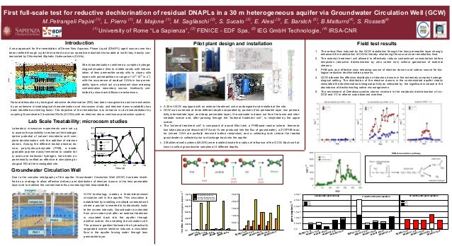 First full-scale test for reductive dechlorination of residual DNAPLs in a 30 m heterogeneous aquifer via Groundwater Circ...
