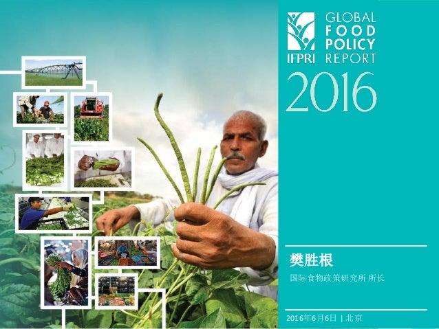 2016年6月6日 | 北京 樊胜根 国际食物政策研究所 所长