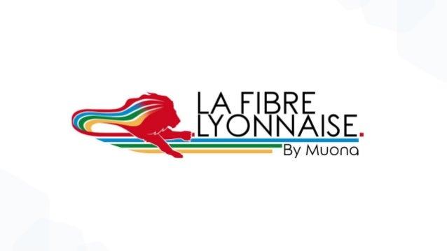 La Métropole du Grand Lyon 1,33 M d'habitants 186 hab/km² Quincieux 10 460 hab/km² Lyon 59 communes 15 000 entreprises cré...