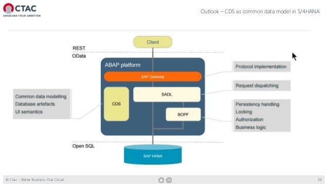 What a CDS-view can do for you | sitNL 2016