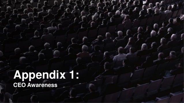 Appendix 1: CEO Awareness