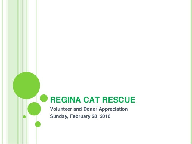 REGINA CAT RESCUE Volunteer and Donor Appreciation Sunday, February 28, 2016