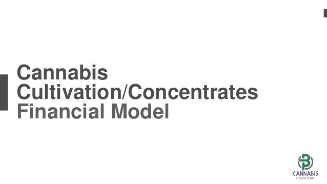 Cannabis Cultivation/Concentrates Financial Model