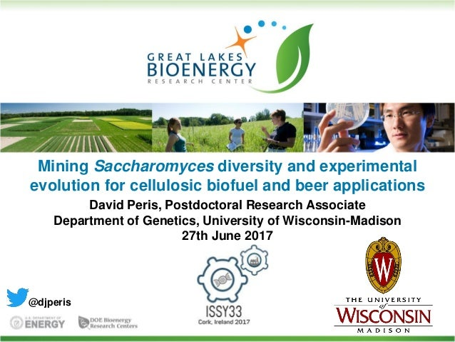 Mining Saccharomyces diversity and experimental evolution for cellulosic biofuel and beer applications David Peris, Postdo...