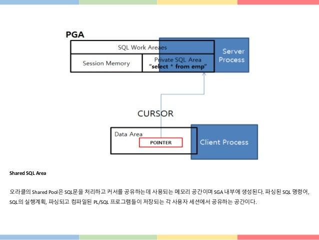 Shared SQL Area 오라클의 Shared Pool은 SQL문을 처리하고 커서를 공유하는데 사용되는 메모리 공간이며 SGA 내부에 생성된다. 파싱된 SQL 명령어, SQL의 실행계획, 파싱되고 컴파일된 PL/SQ...