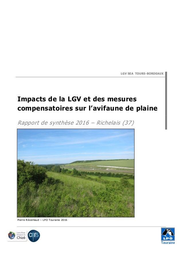 LGV SEA TOURS-BORDEAUX Impacts de la LGV et des mesures compensatoires sur l'avifaune de plaine Rapport de synthèse 2016 –...