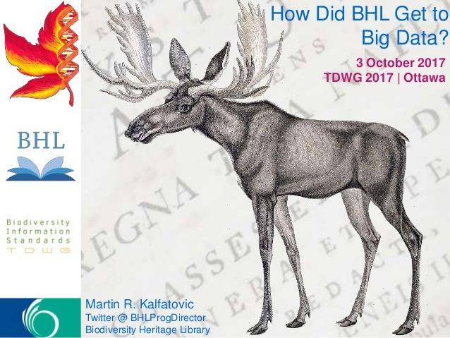 How Did BHL Get to Big Data? 3 October 2017 TDWG 2017 | Ottawa Martin R. Kalfatovic Twitter @ BHLProgDirector Biodiversity...