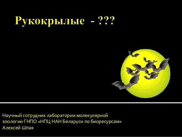 Научный сотрудник лаборатории молекулярной зоологии ГНПО «НПЦ НАН Беларуси по биоресурсам» Алексей Шпак