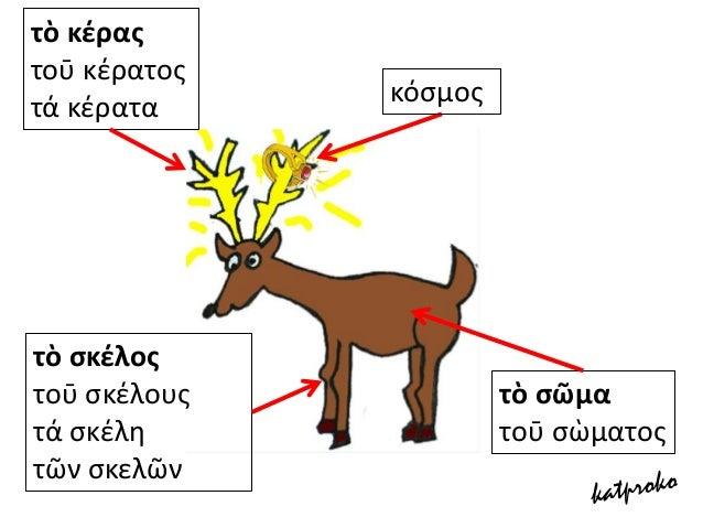 ΕΤΥΜΟΛΟΓΙΚΑ