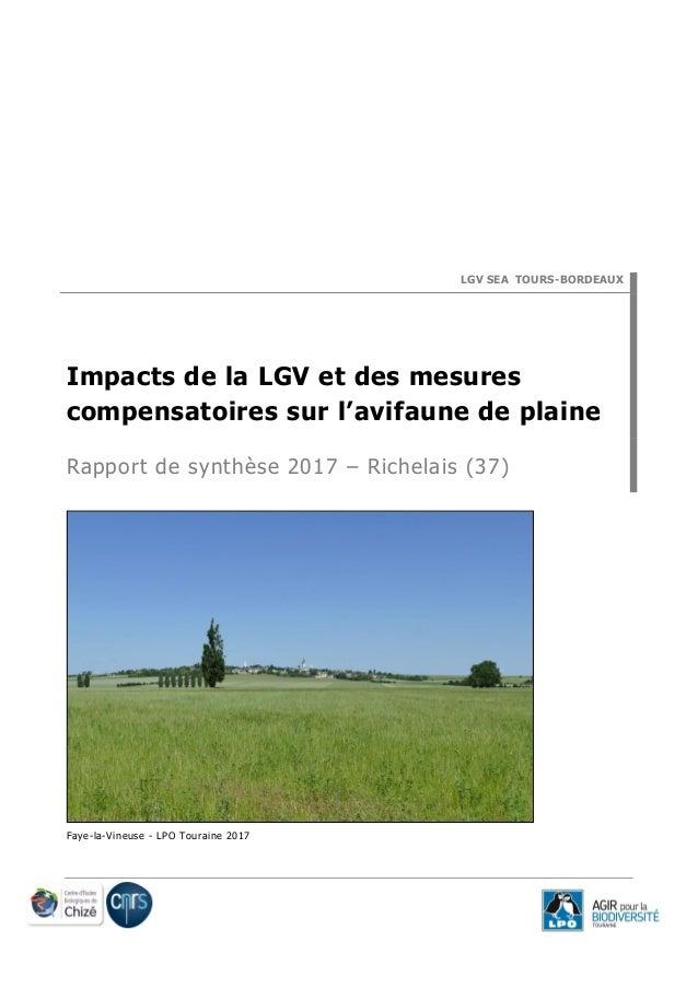 LGV SEA TOURS-BORDEAUX Impacts de la LGV et des mesures compensatoires sur l'avifaune de plaine Rapport de synthèse 2017 –...