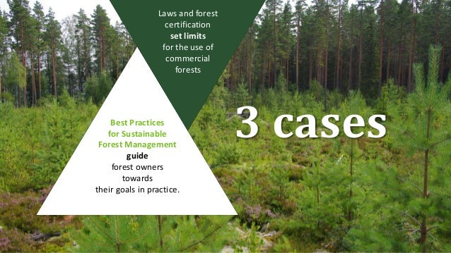 Sustainable Forest Management ~ Best practices for sustainable forest management in finland