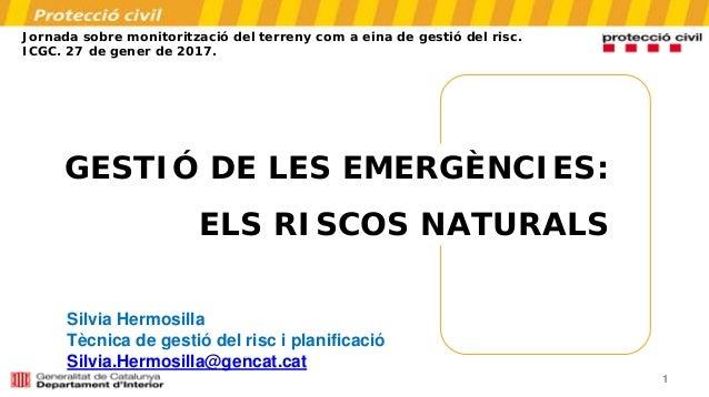 1 GESTIÓ DE LES EMERGÈNCIES: ELS RISCOS NATURALS Jornada sobre monitorització del terreny com a eina de gestió del risc. I...