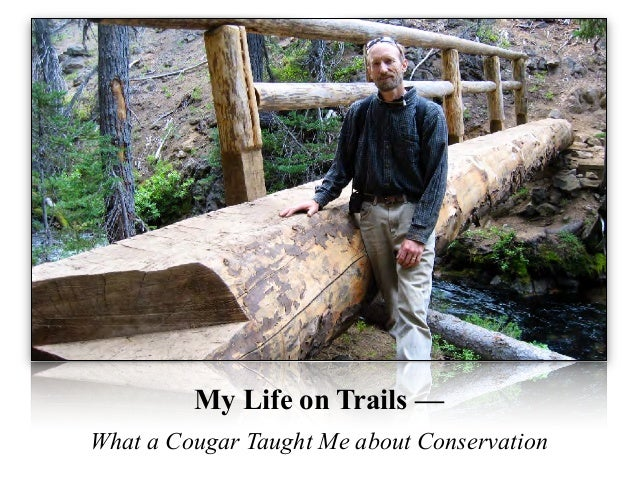 My Life on Trails — What a Cougar Taught Me about Conservation