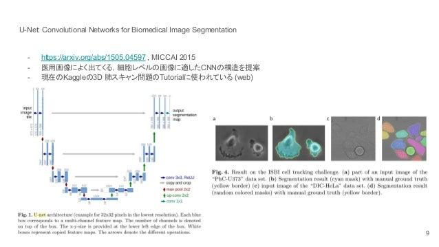 2D Segmentation Fully Convolutional Networks – Meta Morphoz