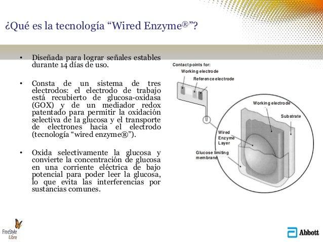 """¿Qué es la tecnología """"Wired Enzyme®""""? • Diseñada para lograr señales estables durante 14 días de uso. • Consta de un sist..."""