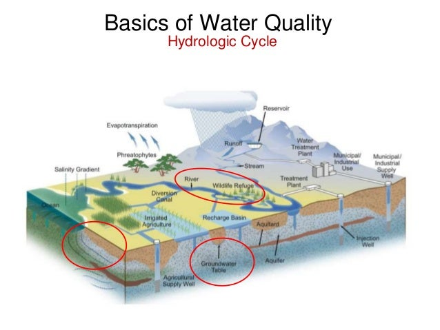 water quality modeling research papers Artificial neural network modeling of the water quality index using land   source: water environment research, volume 87, number 2, february 2015, pp   this paper describes the design of an artificial neural network.