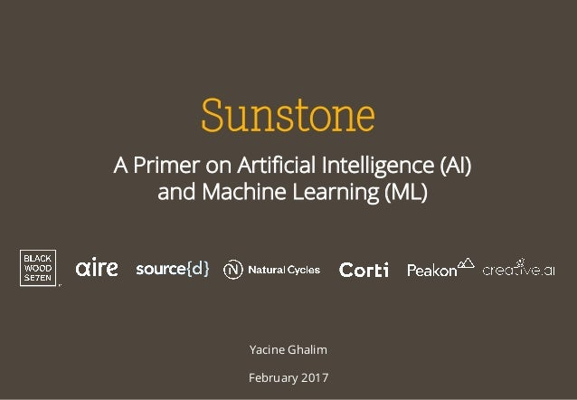 A Primer on Artificial Intelligence (AI) and Machine Learning (ML) Yacine Ghalim February 2017