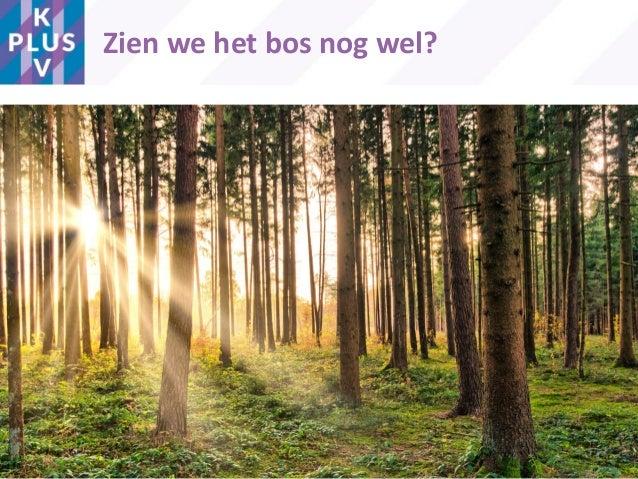 Zien we het bos nog wel? 4
