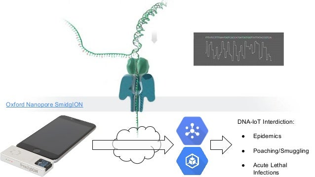 Oxford Nanopore SmidgION DNA-IoT Interdiction: ● Epidemics ● Poaching/Smuggling ● Acute Lethal Infections