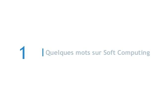 Quelques mots sur Soft Computing 1