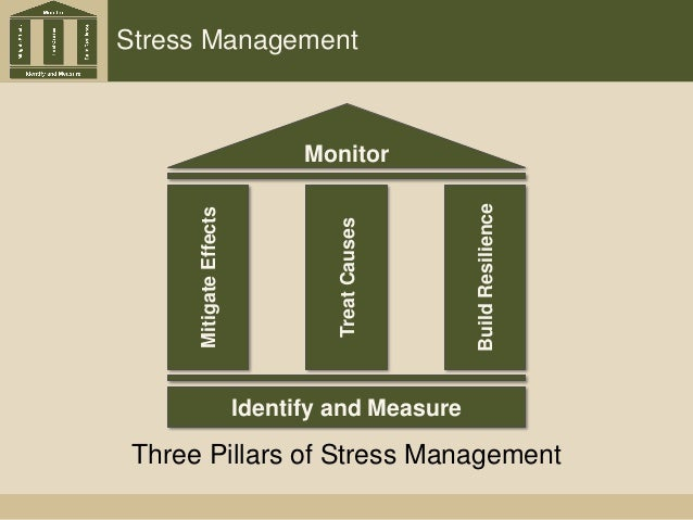 Stress Management Monitor MitigateEffects BuildResilience TreatCauses Identify and Measure Three Pillars of Stress Managem...