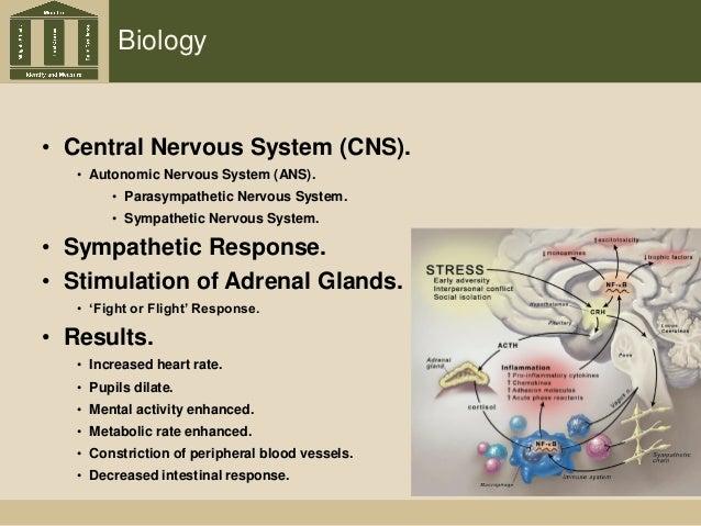 Biology • Central Nervous System (CNS). • Autonomic Nervous System (ANS). • Parasympathetic Nervous System. • Sympathetic ...
