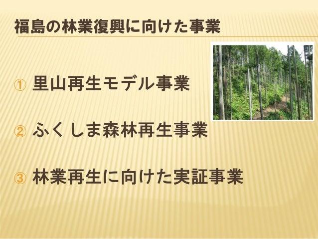 除染と間伐の境界はあるのか?