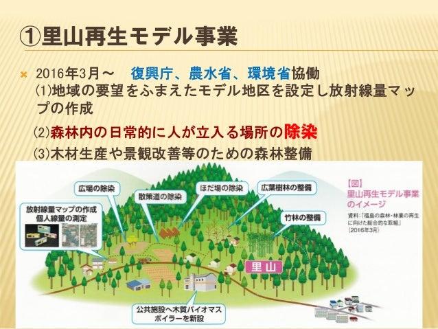 林野庁は・・・  間伐で空間線量率は下がらない  線量が高いのは落ち葉の堆積層  落ち葉さらいが効果的な除染  しかし、落ち葉さらいは里山除染のみ (汚染濃度の高い廃棄物⇒環境省へ)