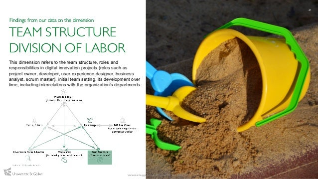 TEAM STRUCTURE DIVISION OF LABOR This dimension refers to the team structure, roles and responsibilities in digital innova...