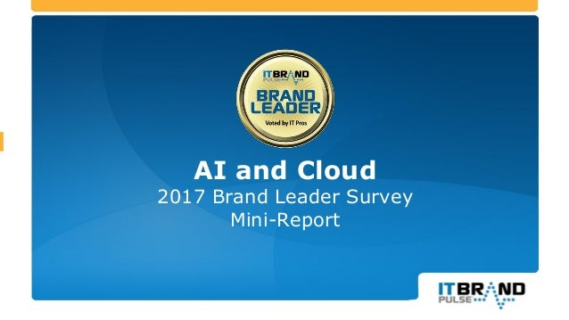 AI and Cloud 2017 Brand Leader Survey Mini-Report