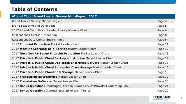 2017 AI and Cloud Brand Leader Mini-Report Slide 3