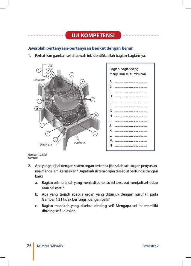 Kunci Jawaban Buku Paket Ipa Kelas 7 Semester 1 Halaman 29