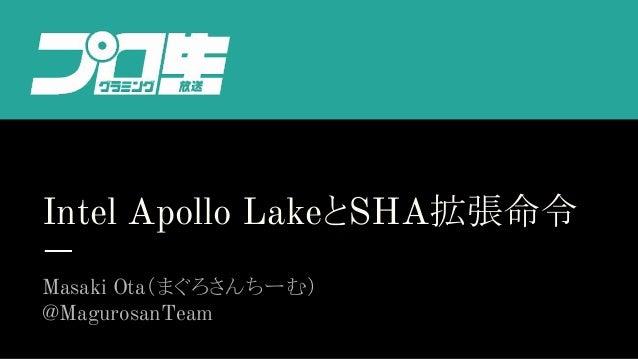 Intel Apollo LakeとSHA拡張命令 Masaki Ota(まぐろさんちーむ) @MagurosanTeam