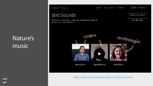 Nature's music https://experiments.withgoogle.com/ai/bird-sounds