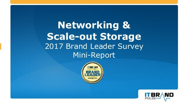 Networking & Scale-out Storage 2017 Brand Leader Survey Mini-Report