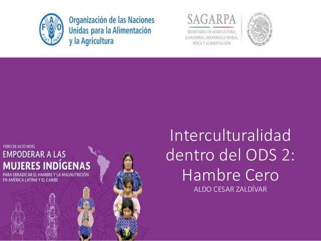 Interculturalidad dentro del ODS 2: Hambre Cero ALDO CESAR ZALDÍVAR