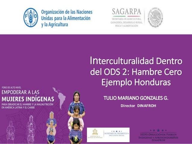 Interculturalidad Dentro del ODS 2: Hambre Cero Ejemplo Honduras TULIO MARIANO GONZALES G. Director DINAFROH