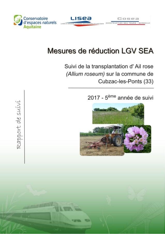 TARTARY P. 2017. Suivi de la transplantation des pieds d'Ail rose (Allium roseum) sur la commune de Cubzac- les-Ponts dans...