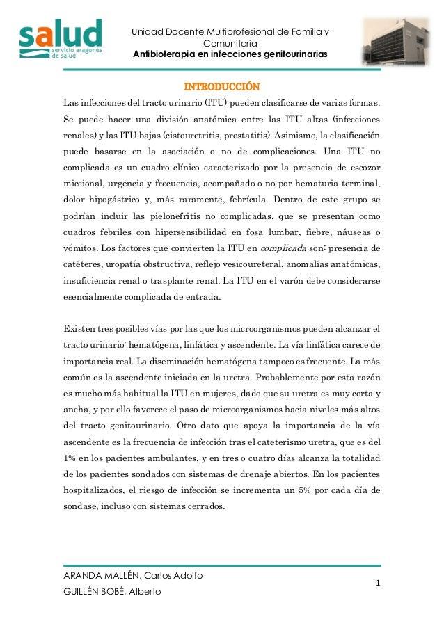 Unidad Docente Multiprofesional de Familia y Comunitaria Antibioterapia en infecciones genitourinarias ARANDA MALLÉN, Carl...