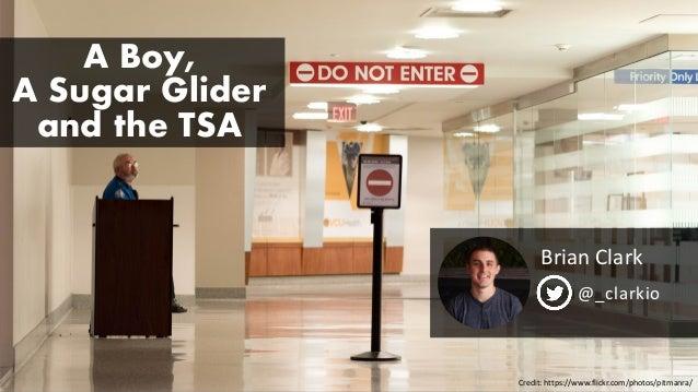 A Boy, A Sugar Glider and the TSA Brian Clark @_clarkio Credit: https://www.flickr.com/photos/pitmanra/