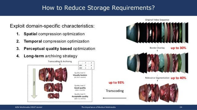 How to Reduce Storage Requirements? Exploit domain-specific characteristics: 1. Spatial compression optimization 2. Tempor...