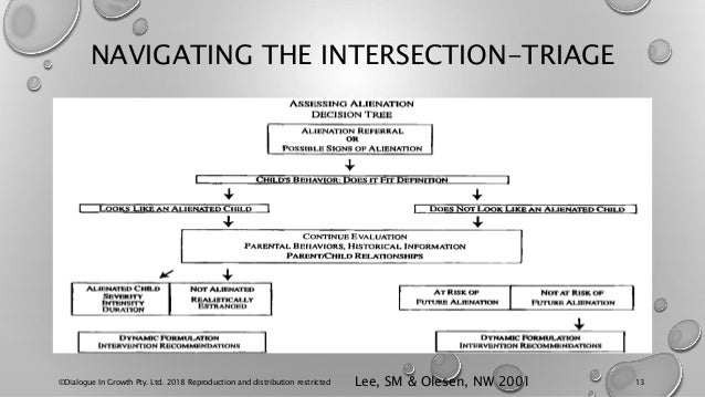 NAVIGATING THE INTERSECTION-TRIAGE ©Dialogue In Growth Pty. Ltd. 2018 Reproduction and distribution restricted 13Lee, SM &...
