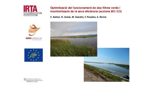 Optimització del funcionament de dos filtres verds i monitorització de la seva eficiència (accions B3 i C3) C. Ibáñez, N. ...