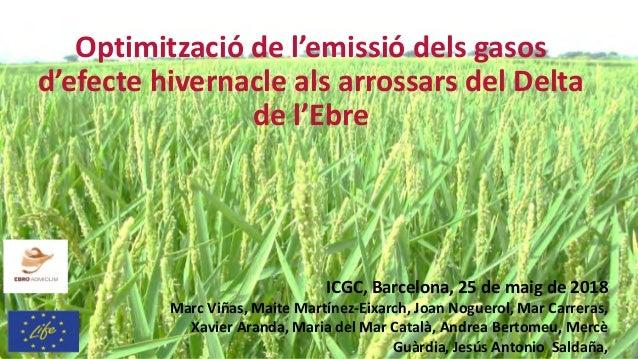 Optimització de l'emissió dels gasos d'efecte hivernacle als arrossars del Delta de l'Ebre ICGC, Barcelona, 25 de maig de ...