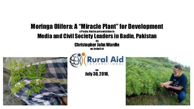 "Moringa Olifera: A ""Miracle Plant"" for Development a Pecha Kucha presentation to Media and Civil Society Leaders in Badin,..."