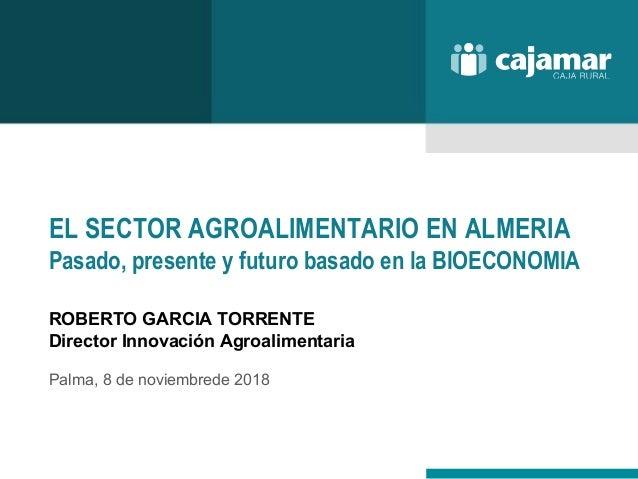 EL SECTOR AGROALIMENTARIO EN ALMERIA Pasado, presente y futuro basado en la BIOECONOMIA ROBERTO GARCIA TORRENTE Director I...