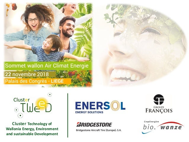 Cluster Technology of Wallonia Energy, Environment and sustainable Development