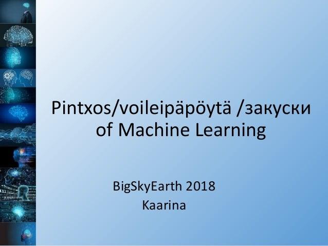 Pintxos/voileipäpöytä /закуски of Machine Learning BigSkyEarth 2018 Kaarina