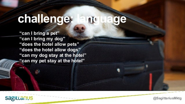 """@SagittariusMktg challenge: language """"can I bring a pet"""" """"can I bring my dog"""" """"does the hotel allow pets"""" """"does the hotel ..."""