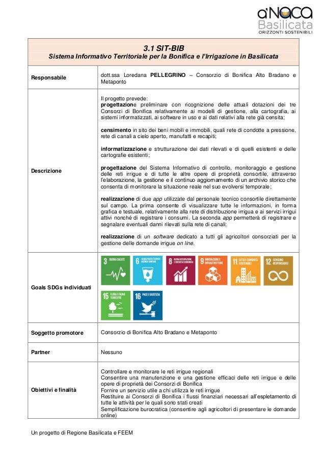 Un progetto di Regione Basilicata e FEEM 3.1 SIT-BIB Sistema Informativo Territoriale per la Bonifica e l'Irrigazione in B...